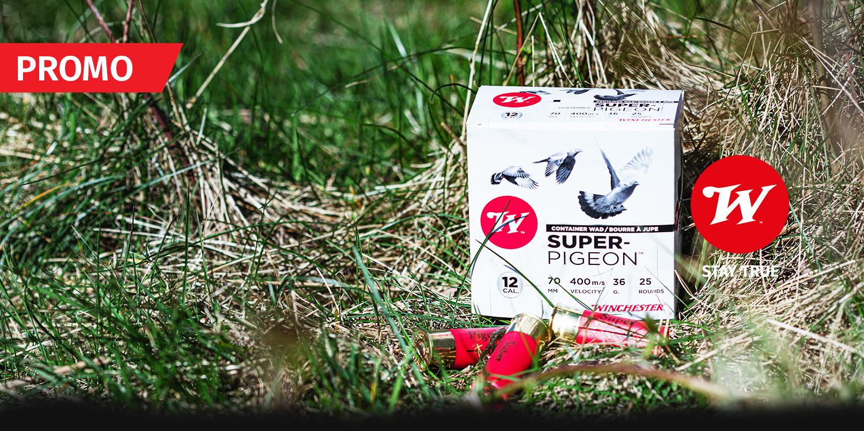 promo super pigeon